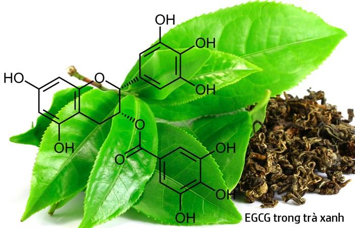 Hợp chất quý EGCG có trong chè xanh